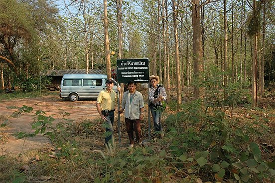 teak plantation promoted through RFD